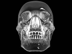 a-crystal-skull