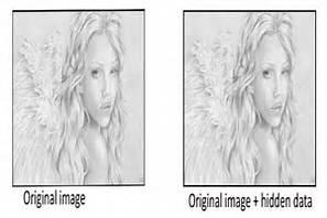 a-hiddeen-image