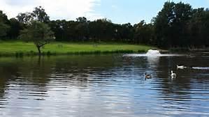 a-lake-image
