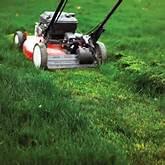 a-mowing-scene