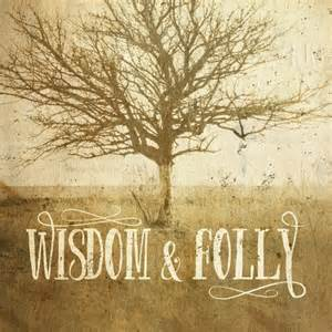 a-wisdom-and-folly-image